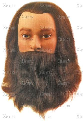 Голова учебная LEIF с усами и бородой